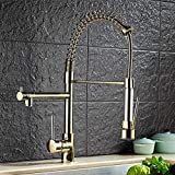 Taps Faucet Faucet Faucet Brass Gold Spring Pull Out Kitchen Faucet Sink Faucet Luxury Hot & Cold Direct Drink Water Kitchen Mixer tap