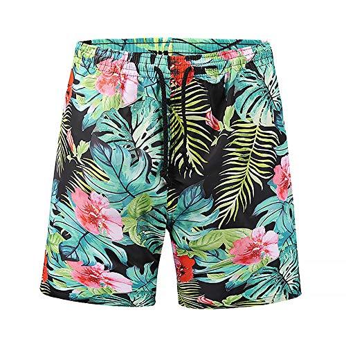 Traje de baño de Secado rápido Hombres gráficos de Verano Pantalones Cortos de natación para Hombres con Bolsillos Cintura elástica (Color : Multi-Colored, Size : L)