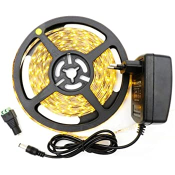 300 LEDS Kit complet Ruban LED Professionnel Flexible Waterproof Couleur Blanc Froid 3528 5 M/ètres