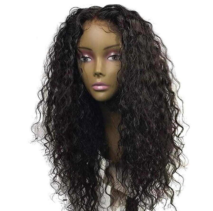 はしご迅速受粉者女性ブラジルレミー深い波髪かつら150%密度レースフロント人毛ウィッグベビー毛黒55センチ