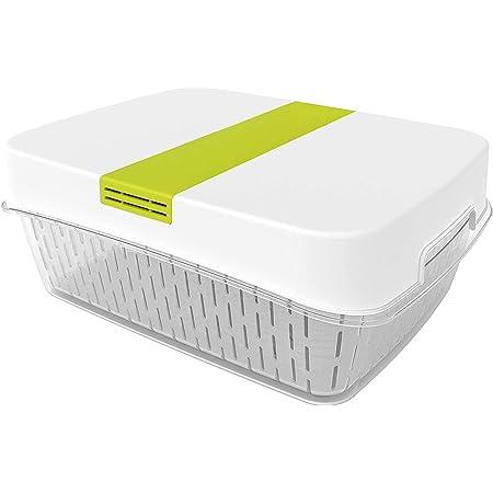 Rotho Fresh grande boîte de 6,4 litres de produits frais avec ventilation, Plastique (PP) sans BPA, blanc/vert, 6.4l (31.4 x 23.9 x 12.0 cm)