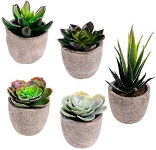 Winlyn Assorted Decorative Faux Succulent Artificial Succulent Cactus Fake Cacti Plants..