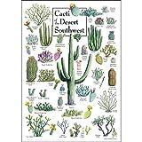 Earth Sky + Water Poster - Cacti of The Desert Southwest