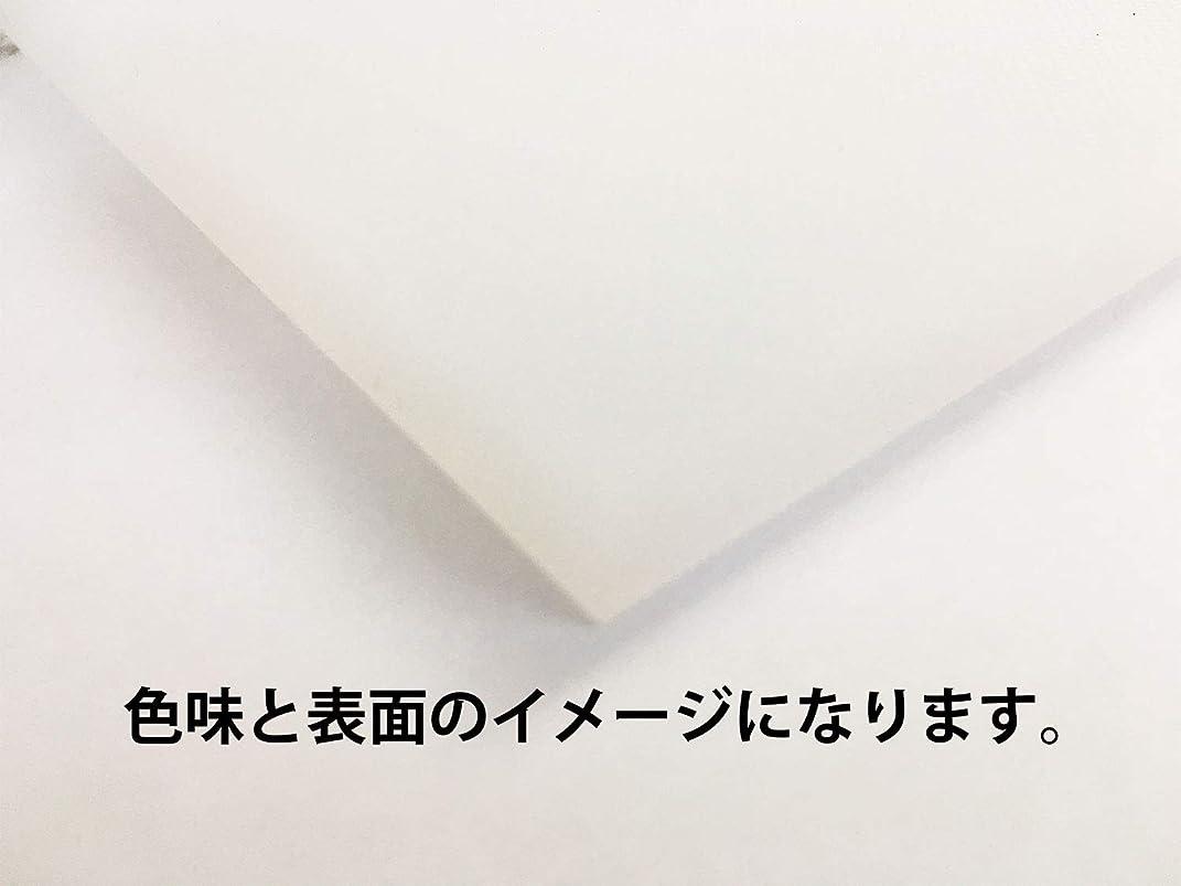 つぶやき爬虫類新しさ2㎝白まな板 400*700mm