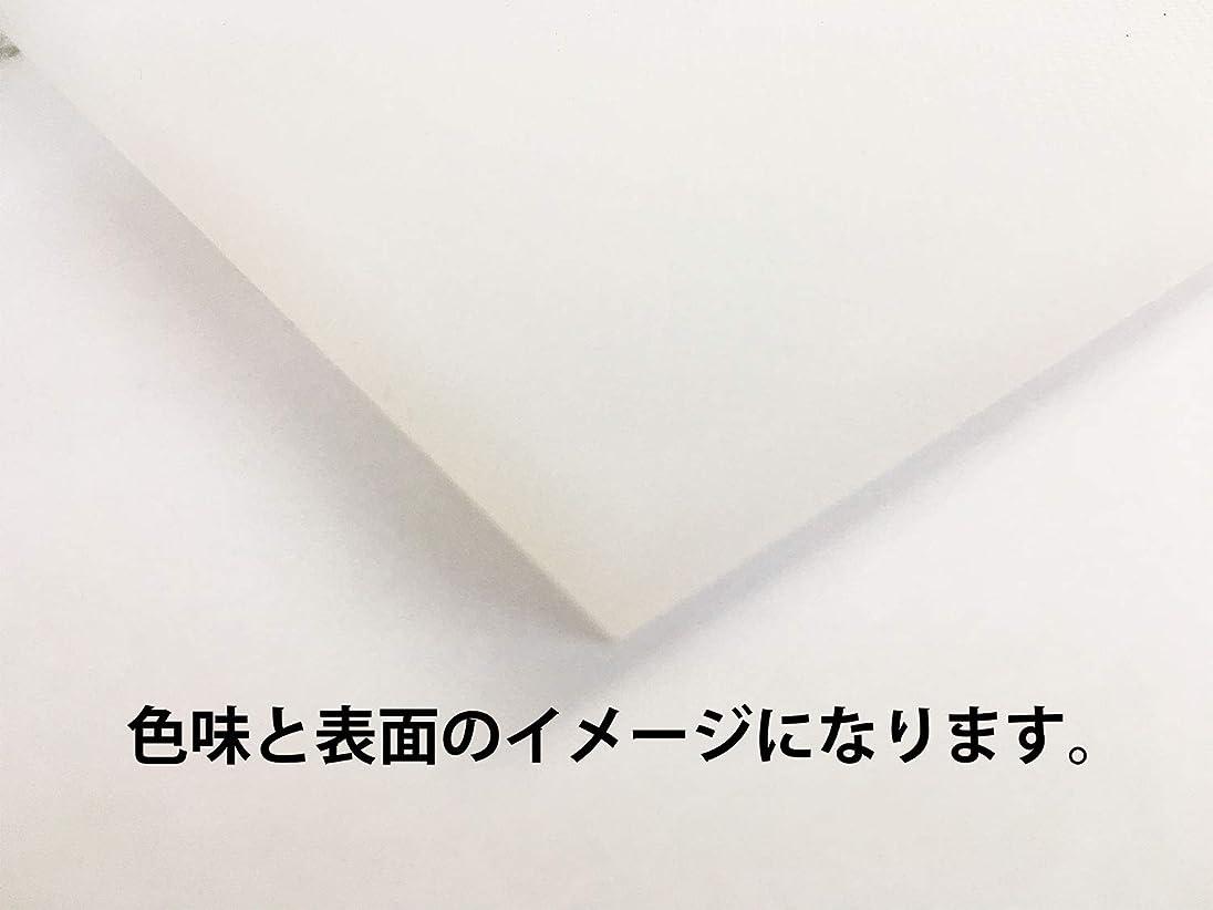 タンカーコールド地球2㎝白まな板 300*500mm