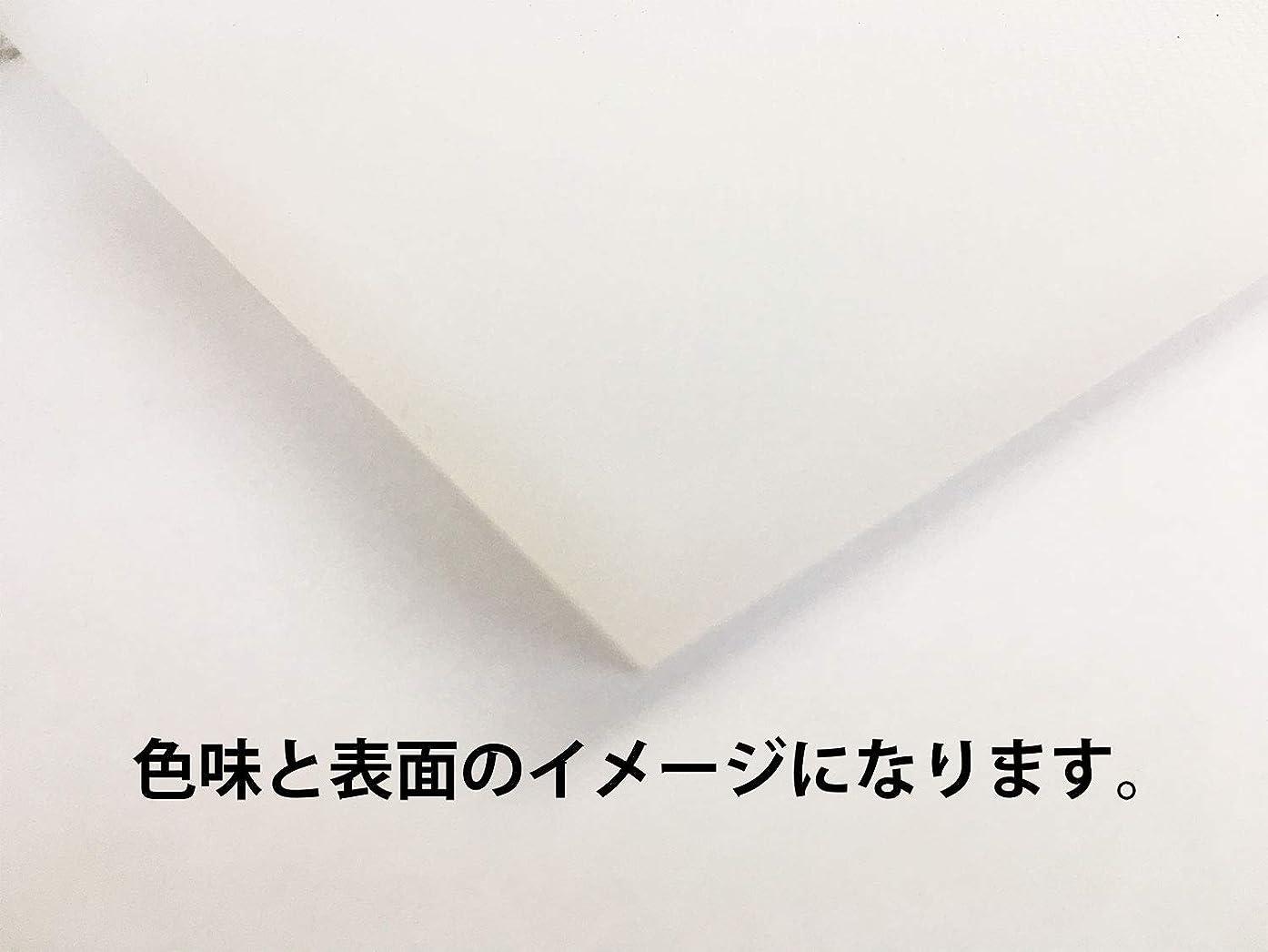 と遊ぶ相対性理論反対に4㎝白まな板 500*500mm