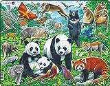 Larsen FH43 Familia de Osos Panda en una Meseta montañosa de China, Puzzle de Marco con 56 Piezas