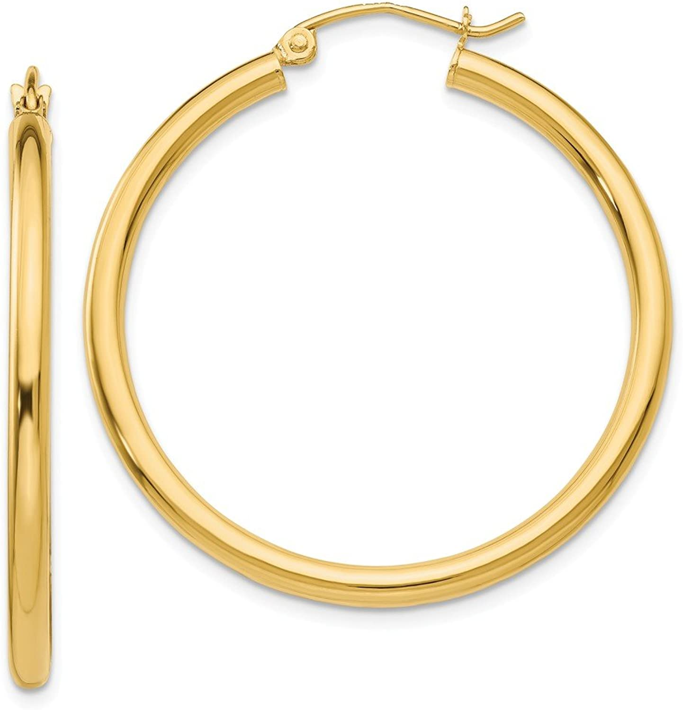 Beautiful Yellow gold 10K Yellowgold 10K Polished 2.5mm Tube Hoop Earrings