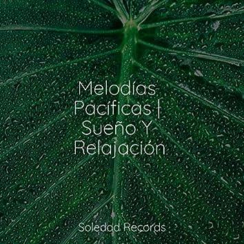 Melodías Pacíficas | Sueño Y Relajación