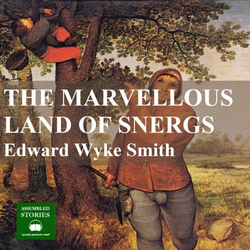 The Marvellous Land of Snergs audiobook cover art