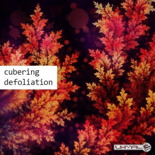 Cubering