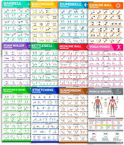 [12-PACK] Large Size Workout Poster Set - Perfect Workout Posters For Home Gym - Exercise Posters Include Dumbbell, Yoga Poses, Resistance Band, Kettlebell, Stretching, Barbell & More Fitness Charts Fitness Planners