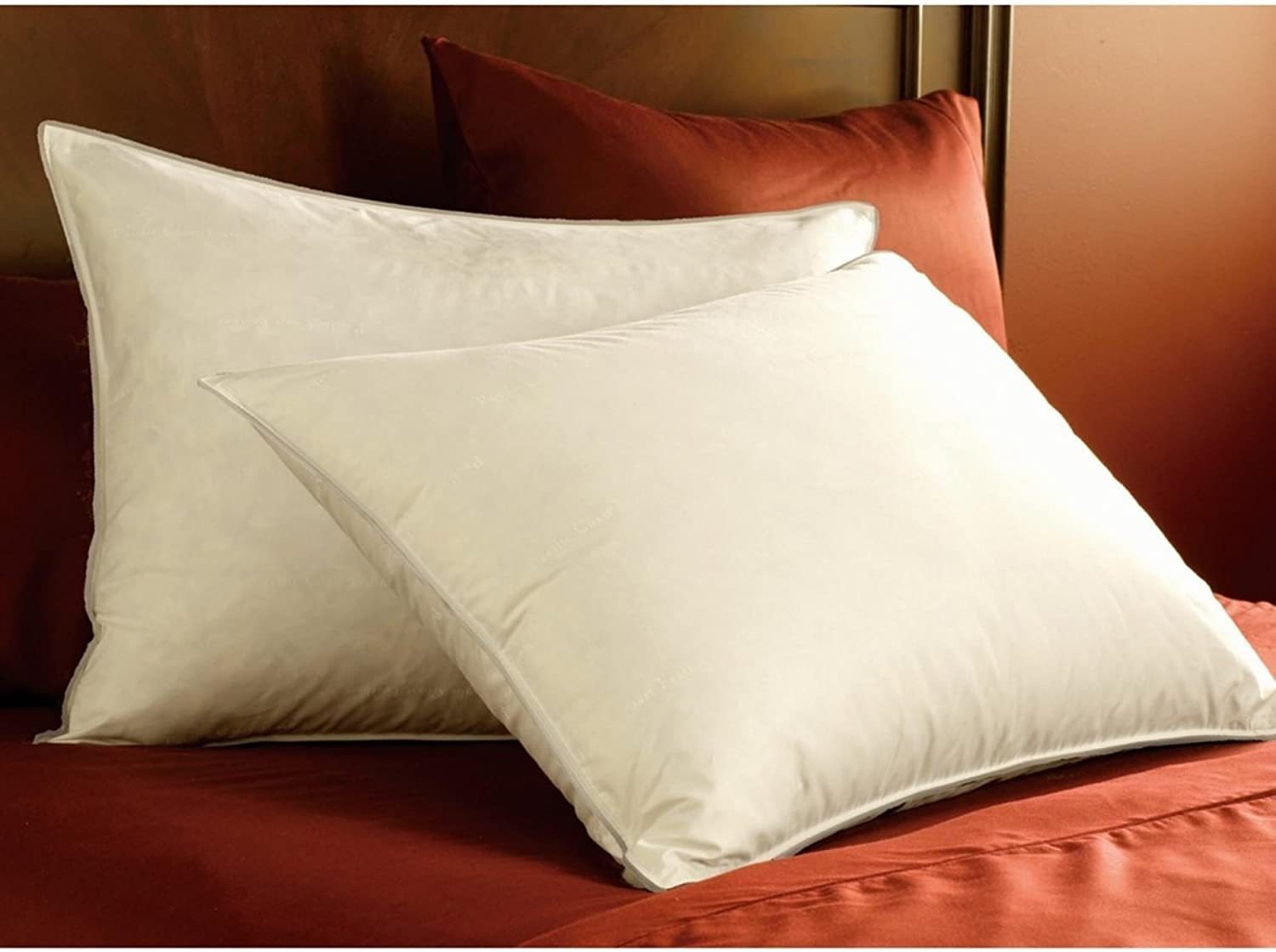 Pacific Coast Double DownAround Soft Pillow 300 Thread Count 550 Fill Power Down & Resilia Feathers  Standard