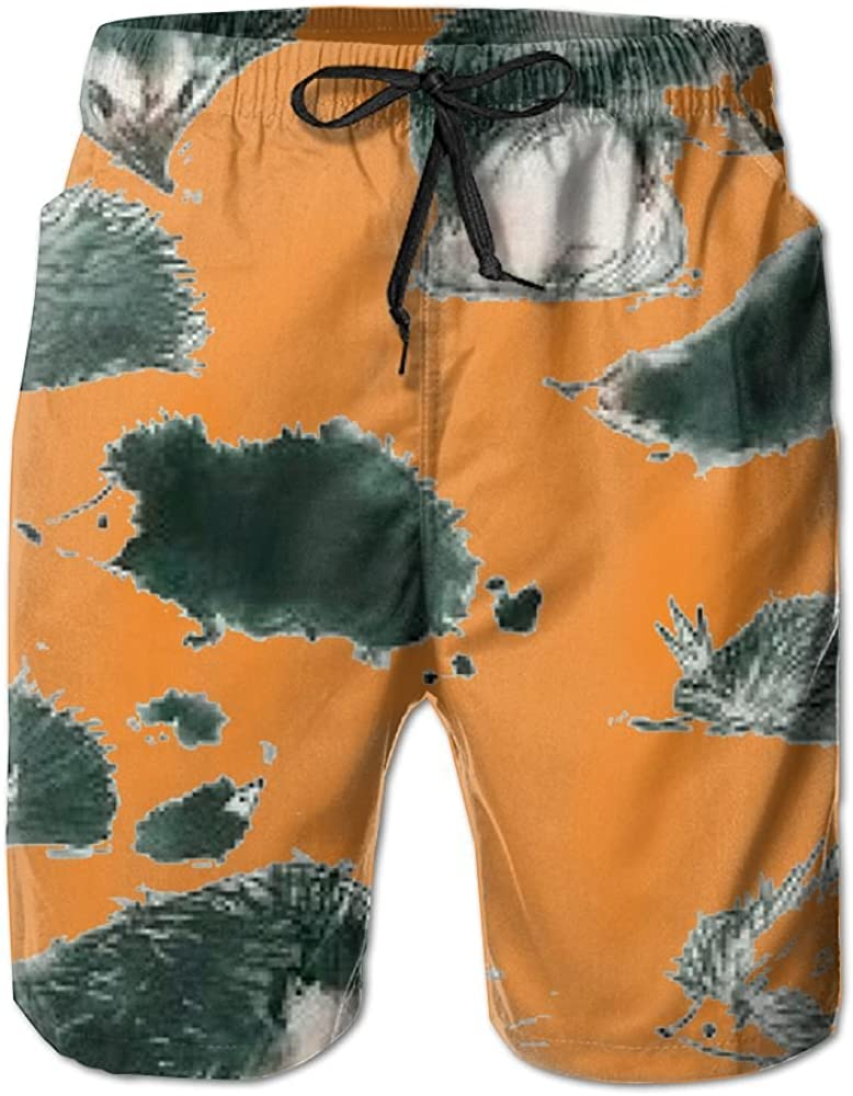 YOIGNG Boardshorts Sirius Mens Quick Dry Swim Trunks Beach Shorts