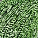 YEZINB Hilo de Rafia 100G / Ball Kintting Hilo de Paja de Papel para Gorro de Ganchillo Hilo Elegante Embalaje de Flores Verano Material Hecho a Mano, Verde