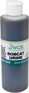 Best bobcat urine for trapping Reviews
