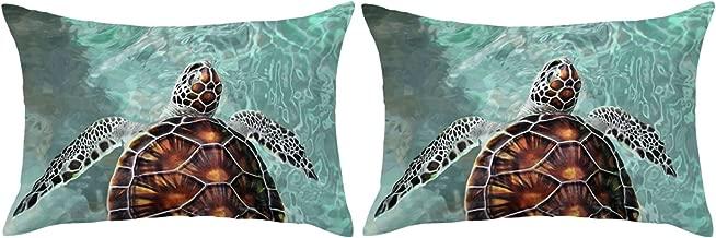 ARIGHTEX Sea Turtle Pillow Case Ocean Pillow Covers Aqua Green Pillow Shams Cute Teenage Boy Girl Pillow Cases Set of 2 (Hawaii Island, King 20 x 36)