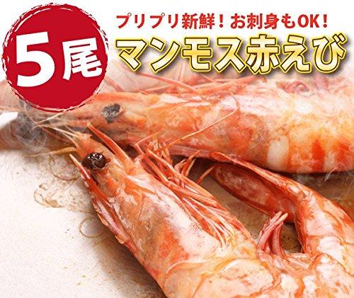 海鮮詰め合せ2種セット片貝ほたて5枚・赤えび5尾【冷凍】バーベキューセット海鮮bbqバーベキューホタテ越前宝や