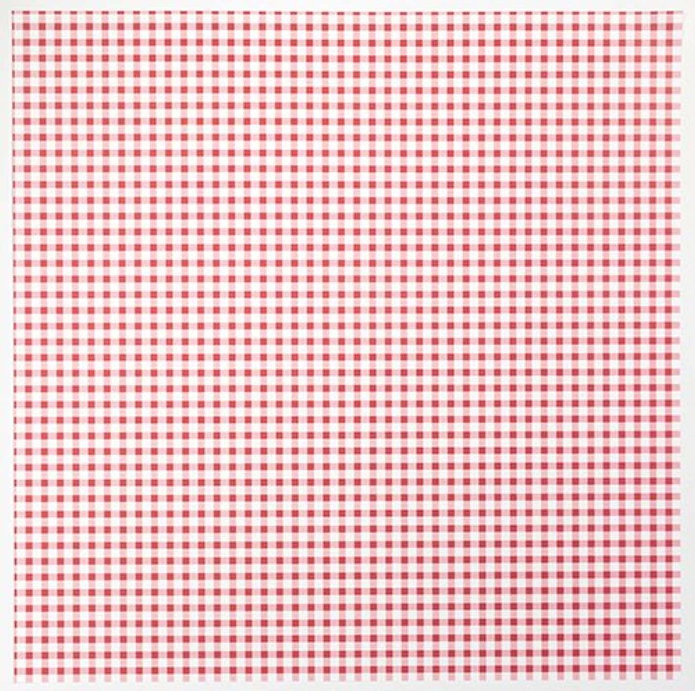 American Crafts 25 12 x 12 Inch Printed Checks Paper Pack by Die Cuts with a View Piece