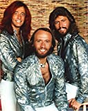 Celebrity Photos Bee Gees Band Portrait Photo Print (20,32