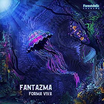 Forma Viva