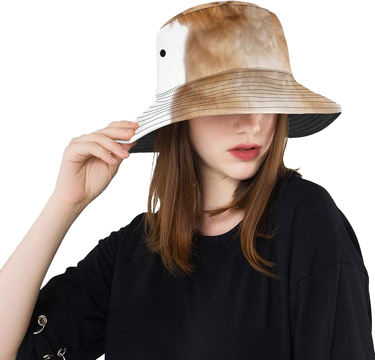 Unique Complete Free Shipping Bucket Hat Beautiful Happy Havanese Reddish Puppy Cas Dog Albuquerque Mall