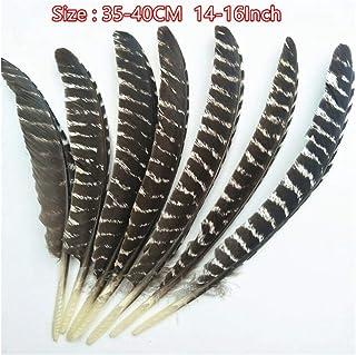 JIWEIER Plumes Naturelles 10-16 Pouces (20-40cm) Plume Artisanat Plume décoration de Mariage Bricolage Plumes pour l'artis...