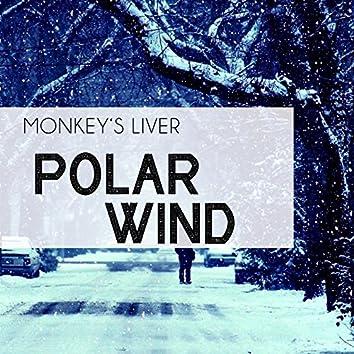 Polar Wind