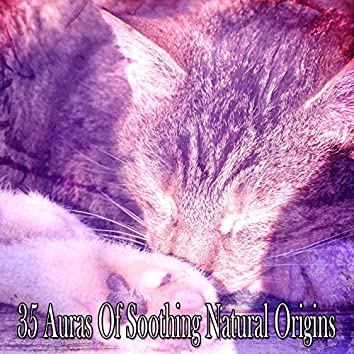 35 Auras Of Soothing Natural Origins