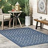 nuLOOM Grayson Moroccan Trellis Indoor/Outdoor Runner Rug, 2' x 8', Blue
