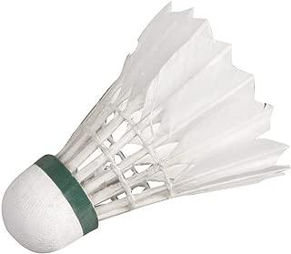 2 palline Hudora Team RQ-44 4 racchette in acciaio Set da Badminton