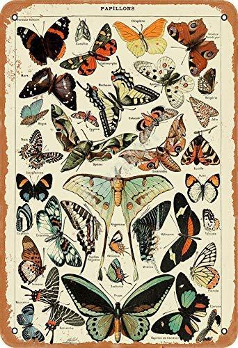Brandless Papillons Cartel de Hierro Oxidado Decorado con Pintura artística en Placa de estaño Antigua en Placa de Aluminio