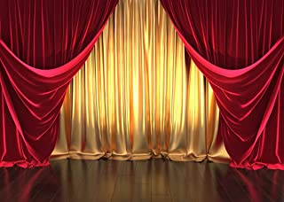GYA 7x5ft Golden Red Curtain Party Backdrop Retro Wood Floor Photography Background Kids Children Adult Family Birthday Carnival Baby Party Cake Table Vinyl Banner Supplies GYA-Flower30-7x5FT