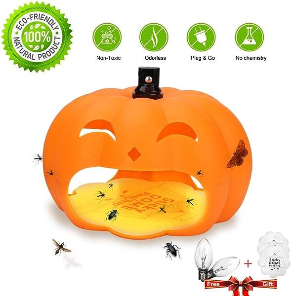 Alexca 2 Trap Safe And Effective Pest Control Orange