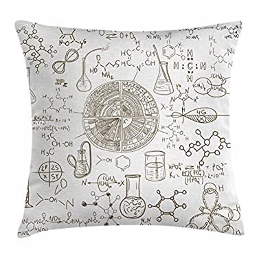 Black and White Throw Pillow Cushion Cover by Ambesonne, Science Theme Hand Drawn Vintage Chemistry Laboratory Illustration, Decorative Square Accent Pillow Case, 16 X 16 Inches, Brown
