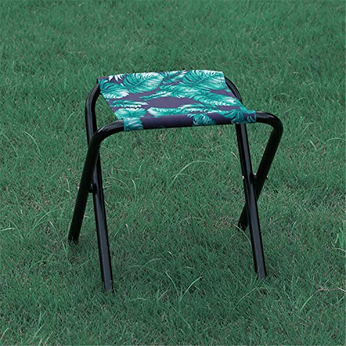 JIAODIE Small Folding Stool Portable, Step Foldable Portable Travel Collapsible Camp Stool, for Fishing Camp Hiking Beach Garden BBQ Lightwight Waterproof, Load Up 90kg,B,2 PCS