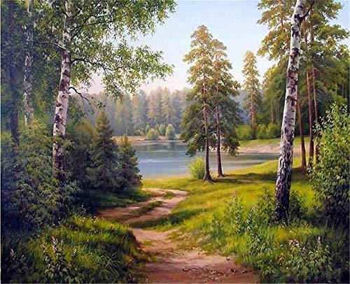 YEESAM ART DIY Ölgemälde Malen nach Zahlen Erwachsene Kinder, Holz Wald Grüner Baum See Zahlenmalerei ab 5 Öl Wandkunst (Wald, mit Rahmen)