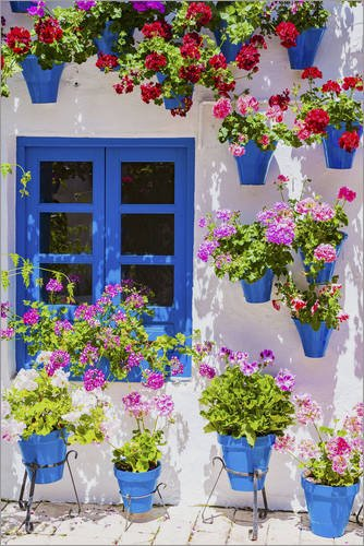 Posterlounge Cuadro de Aluminio 60 x 90 cm: La Fiesta de los Patios de Córdoba de Age fotostock/Mauritius Images