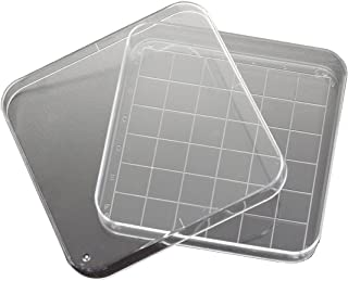 Best square petri dish with grid Reviews