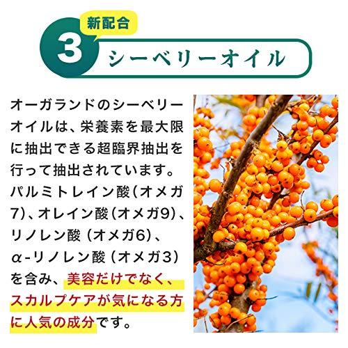 お徳用ノコギリヤシ(約3ヶ月分)