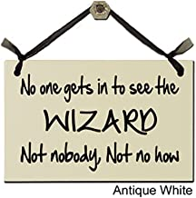 No one gets in to see the WIZARD. Not nobody, Not no how - Decorative Sign