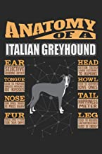 Anatomy Of A Italian Greyhound: Anatomy Of A Italian Greyhound Notebook Journal 6x9 Personalized Customized Gift For Italian Greyhound Mom Dad Lined Paper