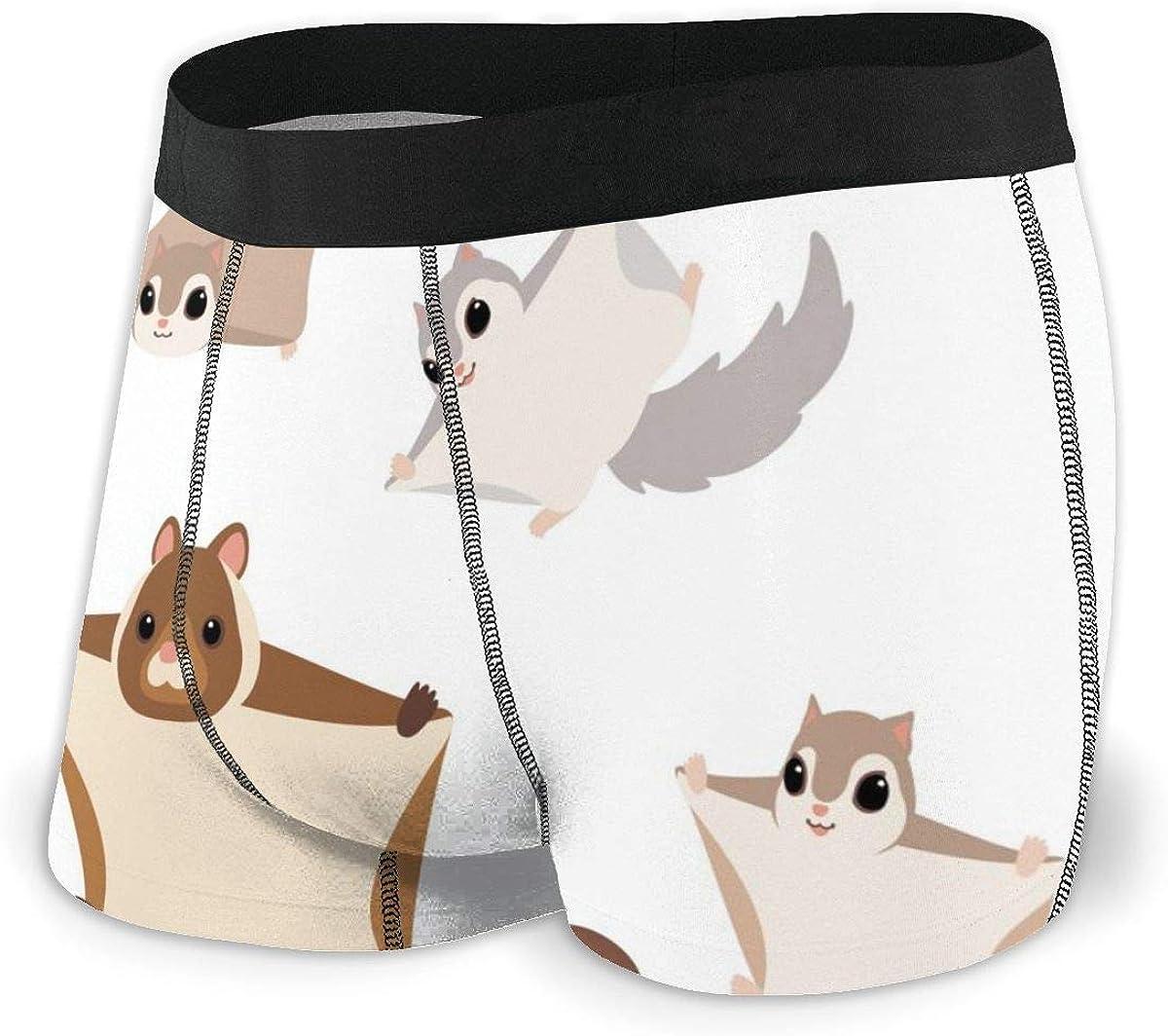 Randolph Wordsworth Mens Boxer Briefs Cartoon Bat Cute Funny Flying Squirrels Boys Trunks Underwear Short Leg Breathable Man