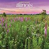 Illinois Wild & Scenic 2020 12 x 12 Inch Monthly Square Wall Calendar, USA United States of America Midwest State Nature