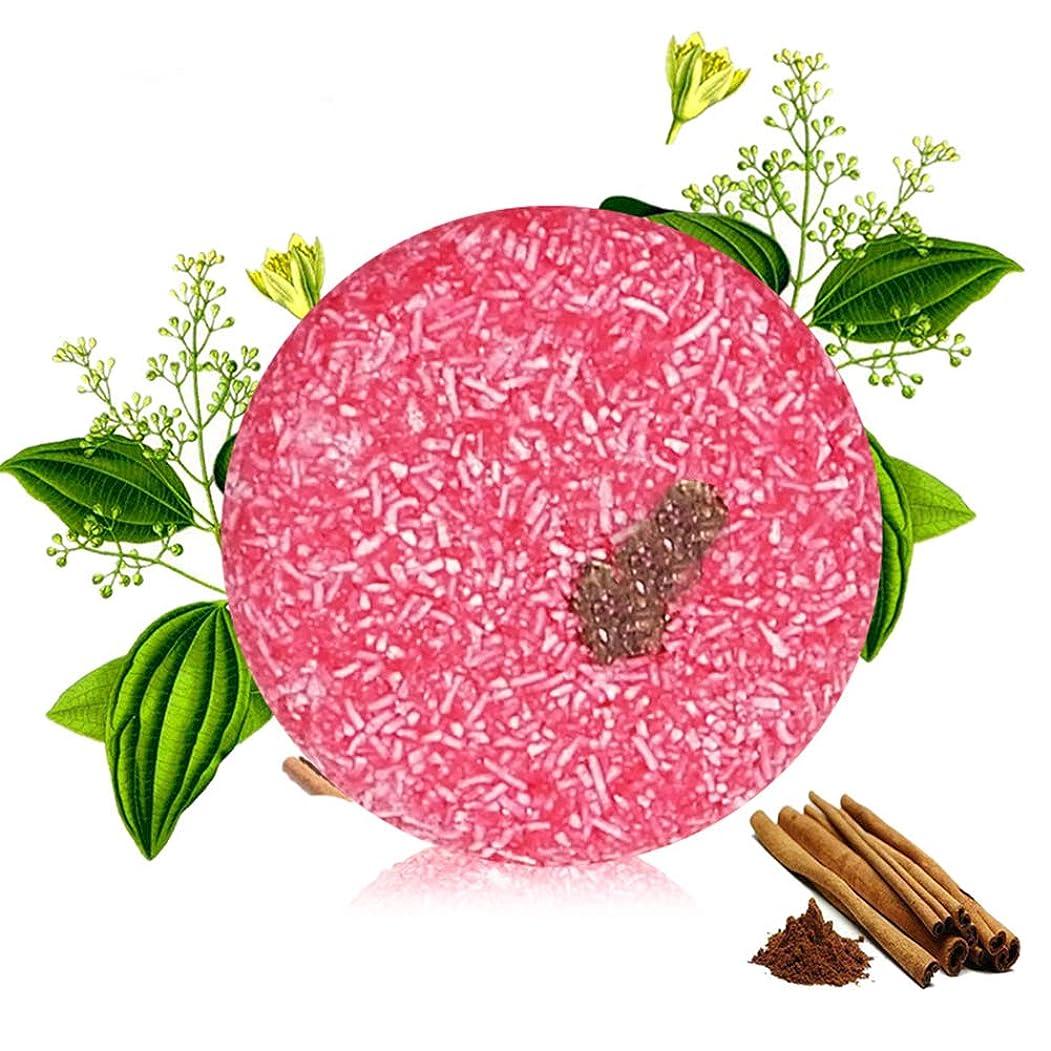 アレルギー性ラフト無秩序手作りオイルコントロールシャンプーソープ落下防止フケ防止シャンプーヘアシャンプー(Cinnamon,シナモン55g)