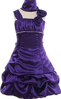 purple zebra quinceanera dresses