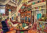 Decorsy Rompecabezas Puzzle 1000 Piezas Adultos Cartel De La Librería De Fantasía Regalos Divertidos De Juguetes Educativos para Niños