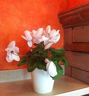 Maceta de autorriego Hidro+z en cerámica ecológica de 15 cm - Maceta inteligente para todo tipo de plantas - Maceta inteli...