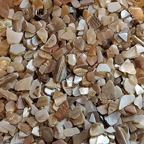 BeachWalk Small Natural Crushed Shells - for Weddings, Vase Filler, Home Décor, and Crafts (32 oz (2 lb), Blue Pearl)