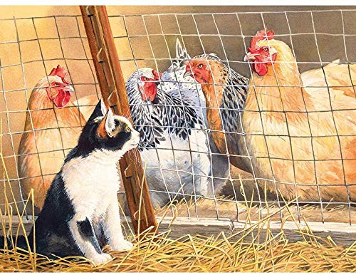 XZHYMJ Gabbia per gatti e galline fai-da-te con diamante 5D 40 * 50 cm